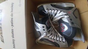 Brand New Skates *never been used*