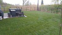 Pose de pelouse à 0.60$/pied carré et GARANTIE
