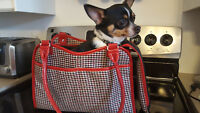 Sac Transport Petit Chien chihuahua - Rouge