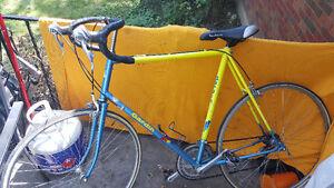 Road bike Gardin Vintage Steel lugged 63cm FRAME