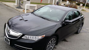 2015 Acura TLX Sedan V6 SH-AWD-LOW MILEAGES NO ACCIDENT-$ FIRM