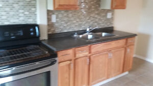 very nice apartment for rent on walkerville area $600 plus hydro Windsor Region Ontario image 4