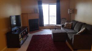 Newly Renovated 2 Bedroom Dundonald Condo Available Immediately