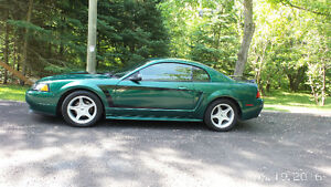 GT-2000 Ford Mustang-Certified-PriceReduced-Excellent Condition
