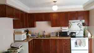 Kitchen cabinets, sink and countertop