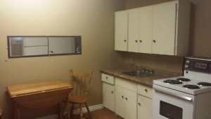 Semi furnished Bachelor Apartment  in Mt Pearl