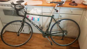 Norco alteres large (cyclotourisme touring road bike)