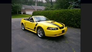 Ford Mustang Gt 2003 Manuelle