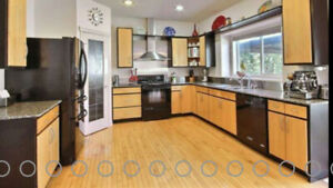 Kitchen cabinets with maple doors and drawers with granite count
