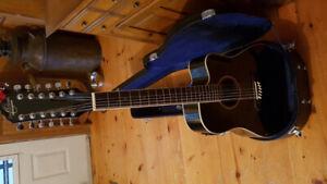 12 string electric guitar.