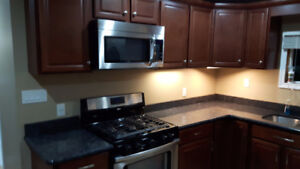 Small updated 2 bedroom House for Rent in Wallaceburg. Jan 1st