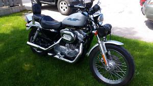 For Sale 2005 Harley Davidson 883 Sportster