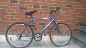 SC1800 Supercycle: Bicycle