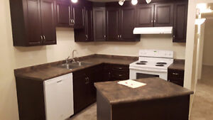 RENOVATED TWO BEDROOM SUITE IN YORKTON