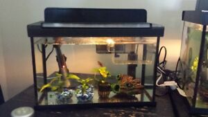 5 Gallon fish tanks with heater, filter, lights under 1 year old