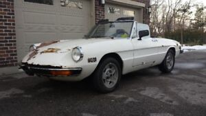 Parting Out - 1972 Alfa Romeo Spider 2000