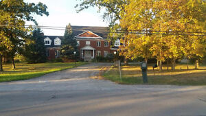 Beautiful Renovated Large Executive Home for Rental