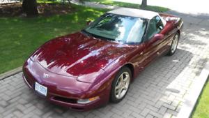 2003 50th anniversary Corvette ORIGINAL 6000KM