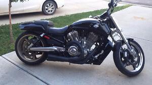 2009 Vrod muscle Harley-Davidson. VRSC . V-rod