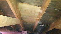 Asbestos, vermiculite and insulation removal