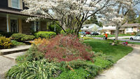 AFFORDABLE Landscaping, Property&Lawn care +MORE FREE ESTIMATE