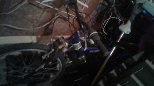 Shimano mountain and girls supercyclye