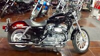 2005 Harley Davidson Sportster XL883C - Very Low Kms