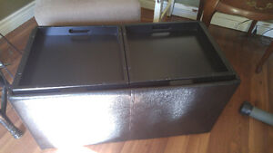 Leather coffee table / ottoman