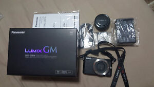 PANASONIC LUMIX GM1 MIRRORLESS CAMERA