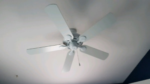 Ceiling Fan --- Like Brand New!