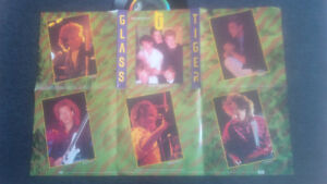 Five Glass Tiger 45 Vinyl Records - one with sleeve poster Cambridge Kitchener Area image 3