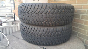 Antares Icy 60 Tires