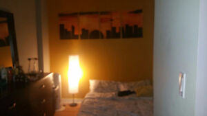 Queens Quay and Spadina furnished den available asap for August