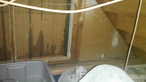 Room for Rent close to Loyalist (Must be a Student) Belleville Belleville Area image 2