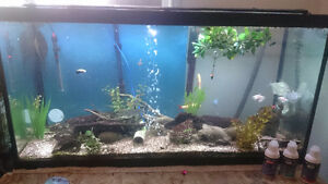 90 Gallon fish Tank / Aquarium NEED GONE!
