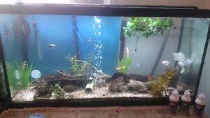 90 Gallon fish Tank / Aquarium NEED GONE!