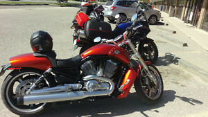 2013 VROD Muscle   Candy Orange   Barely Used   7 yr Warranty