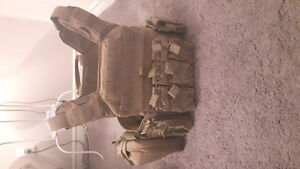 Shell back tactical plate carrier