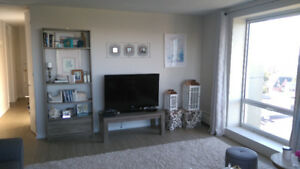 One bedroom available in large 2 bedroom apt for July and august