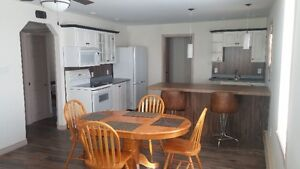 newly renovated, open concept, ground level /parking