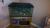 35 gallon fish tank complete with accessories and stand.
