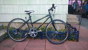 Small Specialized  16 inch
