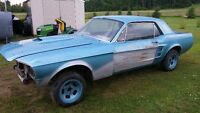 1967 mustang for sale or trade