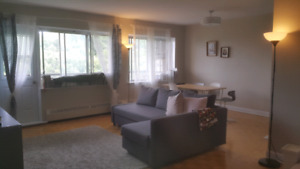 4 1/2 Apartment for rent in Cote des Neiges