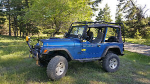 1993 Jeep YJ Renegade