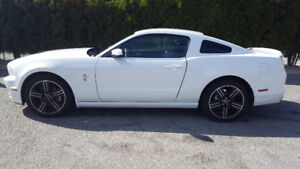 2014 Ford Mustang V6 Premium Coupe (2 door) reduced!