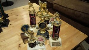 Mixed Hockey Trophies