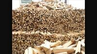 Grean fire wood for sale