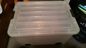 Plastic Container on Wheels Cambridge Kitchener Area image 1