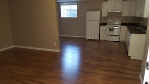 Two bedroom suite in Pineview